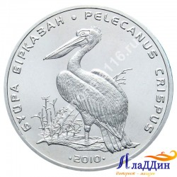 Монета 50 тенге. Пеликан . 2010 год