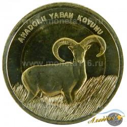 Монета 1 лира Дикий Баран