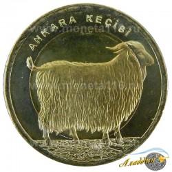 Монета 1 лира Ангорская Коза