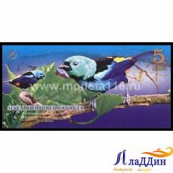 Банкнота 5 аверс доллар Атлантический лес