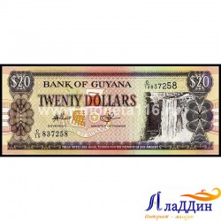 Банкнота 20 долларов Гайана